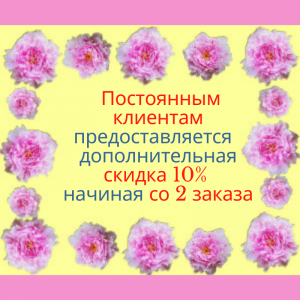 Pink Flowers Sale Social Media Graphic (5)